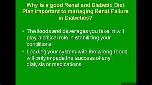 6 Month Diet Chart Renal Diabetic Meal Planning Youtube
