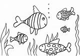 Fish Coloring Pages Simple Colouring Nature sketch template