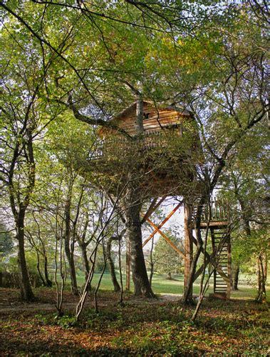 chambre d hotes dans les arbres accueil chambre d 39 hôtes cabane perchée cabane dans les