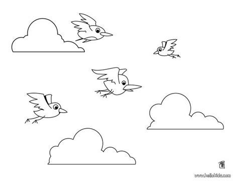 rainforest birds flying coloring pages coloring pages