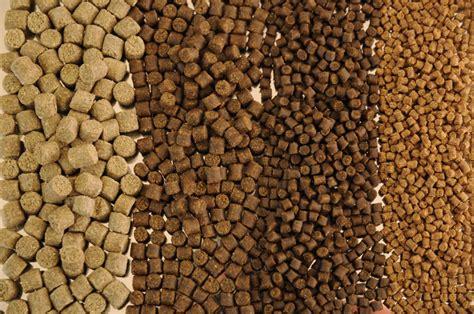 gallery hadas aquafeed solutions