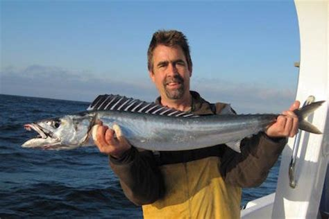 Hooked On Africa Deep Sea Tuna Fishing Charters In Cape Town