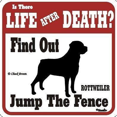 beware  dog quotes quotesgram