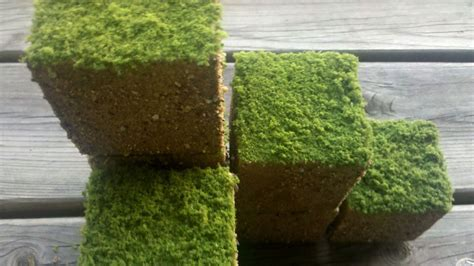 build   lawn   real minecraft grass cubes