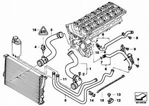 Original Parts For E39 525i M54 Touring    Engine   Cooling System Water Hoses