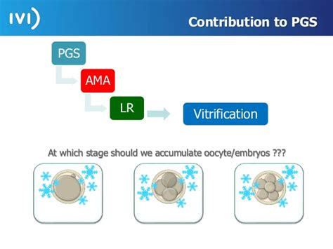 vitrification of oocytes embryos and blastocysts with the