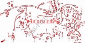 Wire Harness For Honda Shadow 750 1993   Honda Motorcycles