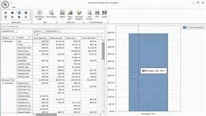 Devexpress Winforms Pivot Grid Integration With Chart