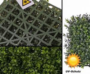 Wetterfeste Kunstpflanzen Balkon : wetterfeste kunstpflanzen im shop bestellen ~ Michelbontemps.com Haus und Dekorationen