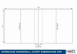 Info Dodgeball
