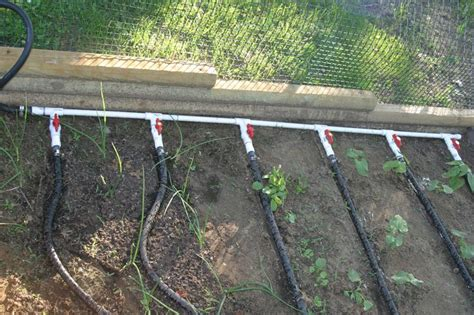 soaker hose manifold placed in garden murray
