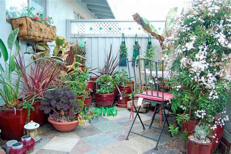 Patio Container Water Garden Ideas  Native Home Garden Design