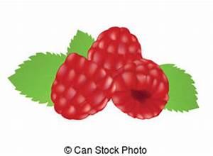 Raspberries clipart - Clipground