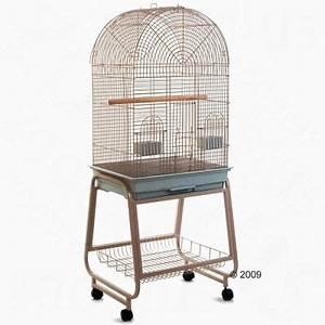 Cage A Perroquet : cage pour perruche et petit perroquet antico zooplus ~ Teatrodelosmanantiales.com Idées de Décoration