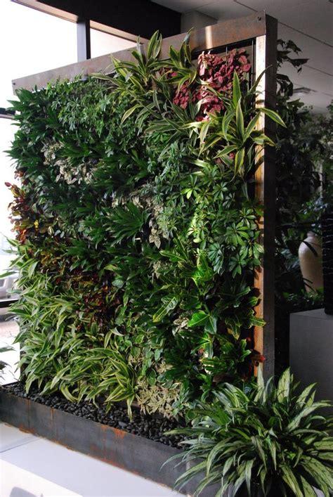 Vertical Garden by 25 Best Ideas About Vertical Gardens On Wall