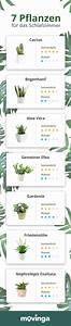 Zimmerpflanzen Für Schlafzimmer : pflanzen im schlafzimmer schlafzimmer pflanzen pflanzen ~ A.2002-acura-tl-radio.info Haus und Dekorationen