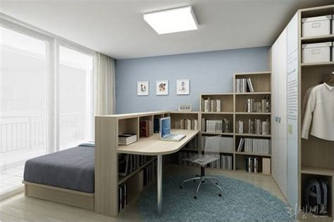 Bedroom & Home Office Combo Divided With Bookcase Home