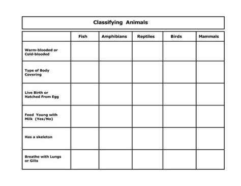 Classifying Animals Activities 5th Grade  1000 Ideas About Animal Classification Activity On