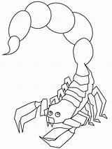 Scorpion Coloring Pages Animals Scorpio Printable Outline Animal Drawing Colouring Scorpions Sheets Books Desert Coloringpagebook Children Insects Adults Advertisement Results sketch template
