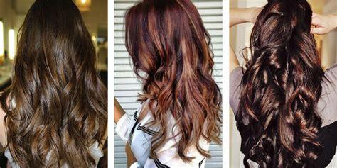 top   shades  brown hair color  hair