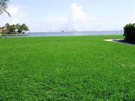 Lawn, Golf & Play