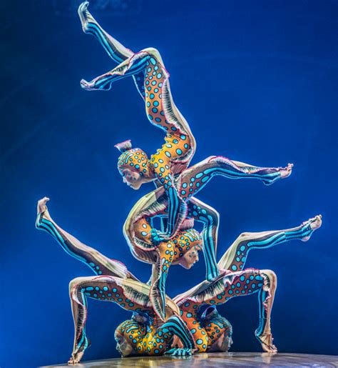 Cirque Du Soleil Cabinet Of Curiosities Chicago by 99 Days Of Summer August 2015 Make It Better Family