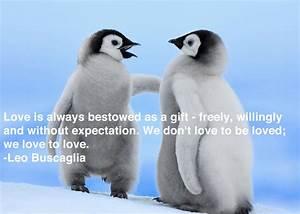 Penguin Love Quotes. QuotesGram