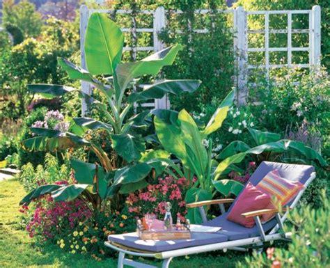 Winterharte Exoten Für Den Garten  Mein Schöner Garten