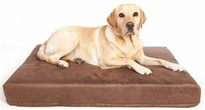 the benefits of memory foam dog beds for hip dysplasia With dog beds for large dogs with hip problems