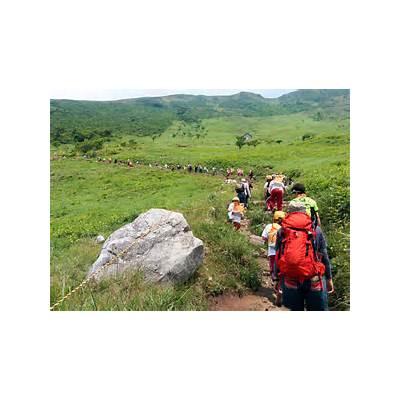 Hiking Mt. Ibuki (伊吹山)Halfway Anywhere