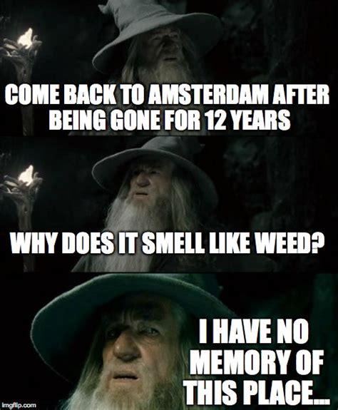 Amsterdam Memes - confused gandalf meme imgflip