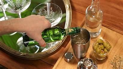 Cocktail Martini Recipes Dirty Splash Classic Vermouth
