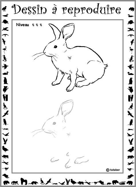 comment cuisiner un lapin comment cuisiner un lapin 28 images comment d 233