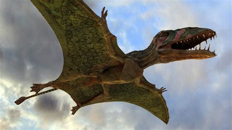 Dinosauro Volante The Lens Flying Monsters 3d Stereoscopic 3d