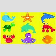 Learn Sea Animals For Kids 🐠 Sea Animals 🐟best Learning Fish Matching Game Video For Children