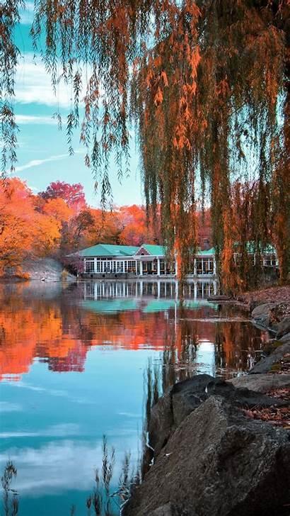 Park Central Landscape York Autumn Wallpapers Background