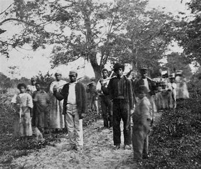 Slaves Plantation History Freed War Civil Cotton