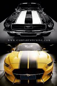Mustang Evolution (With images) | Gold car, Ford mustang, Mustang