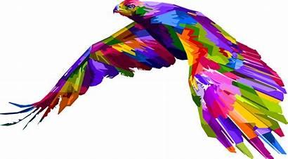 Eagle Geometric Clipart Transparent Feathers Prismatic Parrot