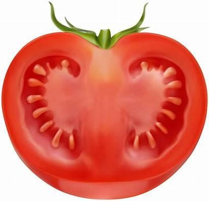 Tomato Half Clipart Transparent Vegetables Clip Yopriceville