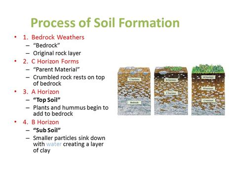 To appreciate the value of soils and their vulnerability to destruction we should know. 68 TUTORIAL : HOW PROCESS OF SOIL FORMATION PDF VIDEO DOC ...