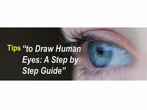 Tips To Draw Human Eyes  A Step By Step Guide