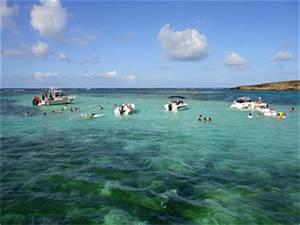 Excursions En Mer En Martinique