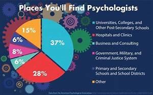 developmental psychology essay exam questions