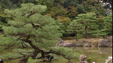 Japanischer Garten  Kinkakuji  Kyoto  Japan Rmvideo