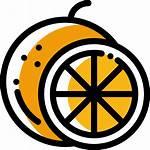 Orange Icon Icons