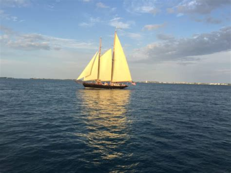 Key West Sailboat by Healthy And Easy Homemade Pasta Sauce Veganosity