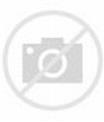 """The Homesman"" premiere in Los Angeles - UPI.com"