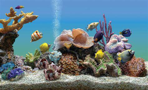 telecharger marine aquarium deluxe gratuit t 233 l 233 charge