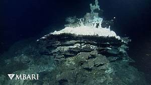 Deepest high-temperature hydrothermal vents discovered in ...